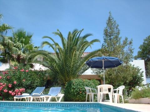 Villa Feliz Pool