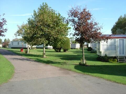 View of park