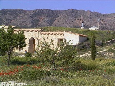 Casa Cueva La Piedra