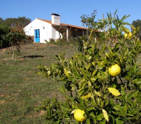 Outside Monte Medronheiro