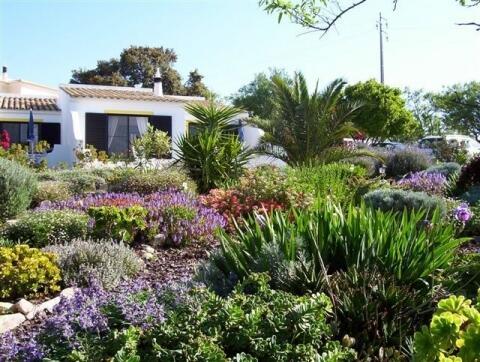 Gardens up to Carob Cottage