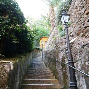 Stairway (50 steps, 15 cm each) which takes to the cottage