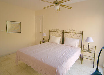 Master bedroom (14' x 12')