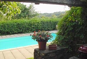 The pool and garden