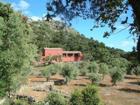 cortijo at Finca al-manzil