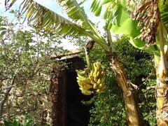 Property Photo: La Casita de Piedra