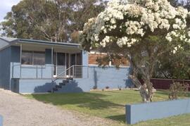 Property Photo: Blue Turtle Beach House