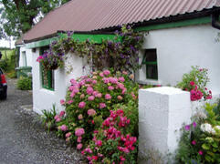 Property Photo: Cottage Near The River Shannon