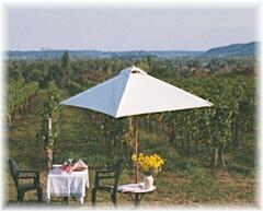 Have dinner in the vineyard.