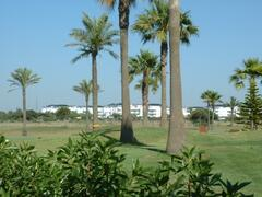 Property Photo: View from the golf course