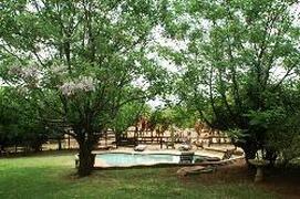 Property Photo: swimming pool area
