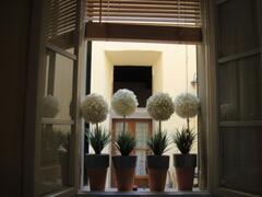 Property Photo: Baldelli1