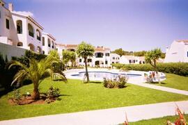 Property Photo: Pool & gardens