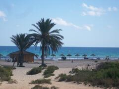 Property Photo: Carabassi Beach Bar