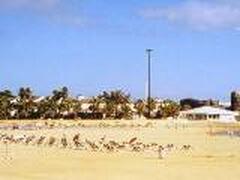 Small area of Caleta beach