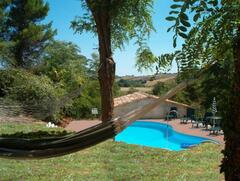 Property Photo: Garden & Pool