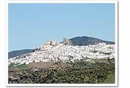 View of Olvera