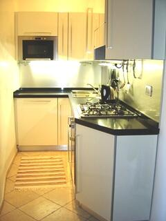 State of the art kitchen with dishwasher and microwave