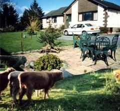Property Photo: Hawthorn B&B
