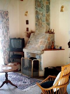 The feature fireplace