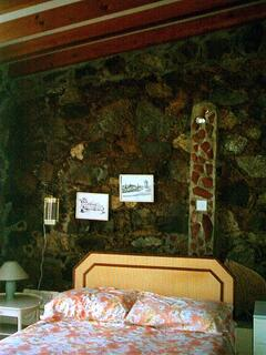 200 year old stone wall in Master Bedroom