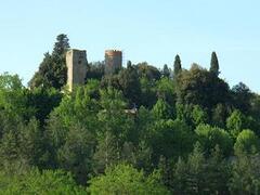 laterina landscape