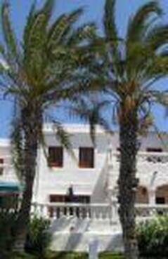 Admire the Royal Palm trees from sunny balcony