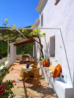 sunny south-facing terrace