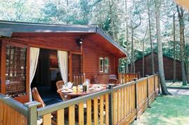 Property Photo: Pinelodge at Darwin Forest