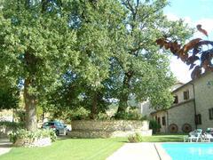 oak by the pool