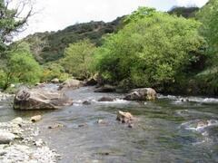 River Glaslyn opposite Arosfa cottage in Beddgelert