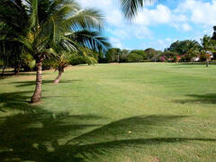 Another view of the beautiful grounds at Club Rockley