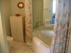 Master bathroom with whirlpool bath