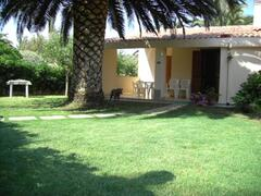 Property Photo: Our front garden with our amazing big palm tree, for shadowed relax during sunny days!