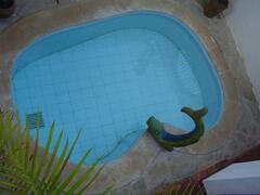 Cottage Plunge Pool