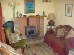 Cozy lounge with log burner
