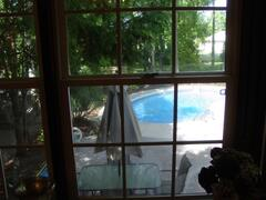 View of pool from dining room window