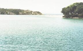 Lake  High Tide