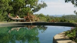 Large, fresh water style pool