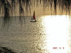 Sailboat viewed from Verandah
