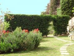Part of the extensive garden