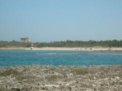 Torre guaceto beach