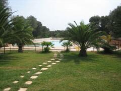 Solarium and swimming pool