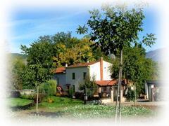 Property Photo: Villa Ulignano
