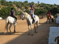 Onsite horse riding