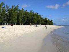 Property Photo: Flic en Flac beach