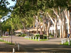 Palm Cove Esplanade