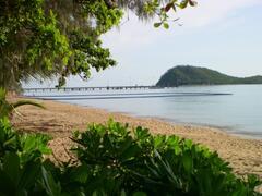 Palm Cove Beach - stinger net & jetty