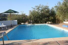 pool and pool terrace