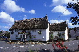 The Red Lion at Mawnan Smith